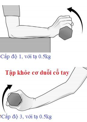 Tập khỏe cơ duỗi cổ tay