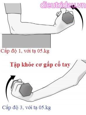 Tập khỏe cơ gấp cổ tay